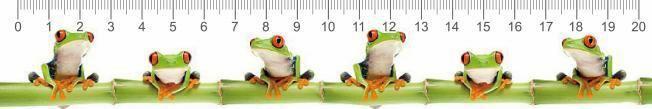 Békák 3D vonalzó 210 x 35 mm A