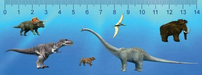 Dinoszauruszok 3D hatású vonalzó 148 x 55 mm A