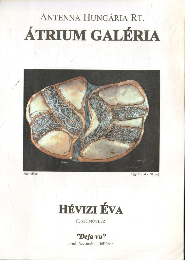 Hévizi Éva festőművész