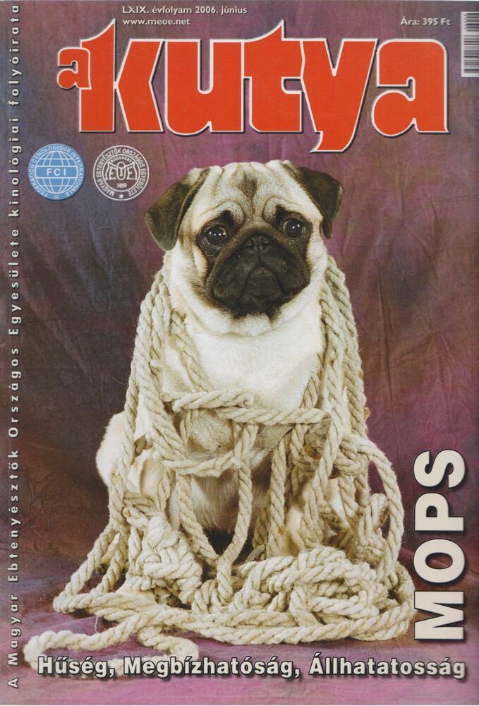 A Kutya LXIX. évf. 2006/6