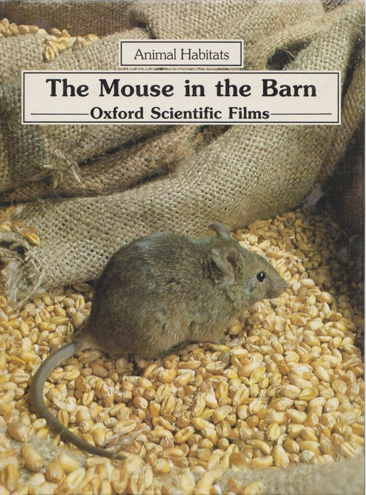 The Mouse in the Barn