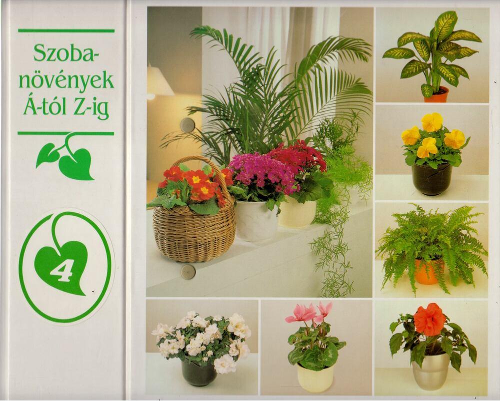 Szobanövények Á-tól Z-ig 4.