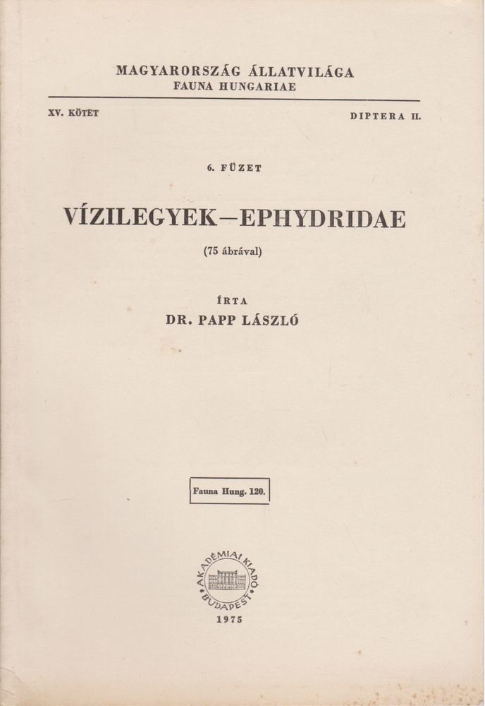 Vízilegyek - Ephydridae