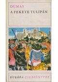 A fekete tulipán - Alexandre Dumas