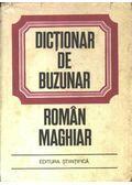 Dictionar de buzunar román-maghiar
