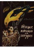 Halkabban, madarak a fészekben (Тише, птицы на гнездах)