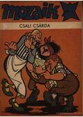 Csali csárda (Mozaik 1980/2.)