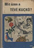 Mit üzen a Tévé Kuckó? - Bálint Ágnes