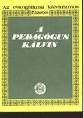 A pedagógus Kálvin