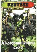 A kordonművelésű szőlő - Dr. Sz. Nagy László