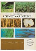 A genetika regénye - Dubinyin, NY. P.