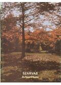 Szarvas - Arborétum