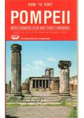 How to visit Pompeii with a general plan and three intineraries