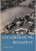 Szülőföldünk, Budapest - Makoldi Mihályné