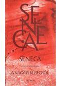 Seneca Nero császárnak a nagylelkűségről - Seneca