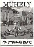 Műhely 2006. XXIX. évfolyam 6. szám - Villányi László