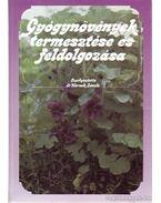 Gyógynövények termesztése és feldolgozása