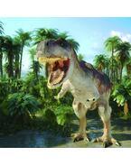 T-rex 3D hűtőmágnes  75 x 75 mm M