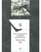 Egy elfeledett ostrom emlékezete - Szigetvár, 1556