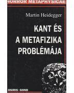 Kant és a metafizika problémája