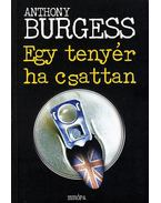 Egy tenyér ha csattan - Anthony Burgess