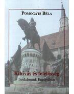 KIHÍVÁS ÉS FELELŐSSÉG - IRODALMUNK EURÓPÁBAN - ÜKH 2009