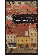 KOLOZSVÁRI NÉZŐ - ÜKH 2010
