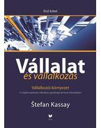 VÁLLALAT ÉS VÁLLALKOZÁS - ELSŐ KÖTET - VÁLLALKOZÓI KÖRNYEZET