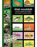Állati mondókák. Tücskök, bogarak és a többiek. Matricákkal és játékkártyákkal. - Stifán Orsolya