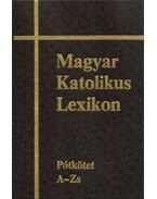 Magyar Katolikus Lexikon XVI.  Pótkötet A - Zs