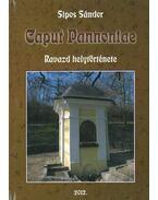 Caput Pannoniae - Ravazd helytörténete