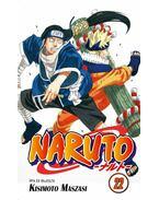 Naruto 22. - Újjászületés!!