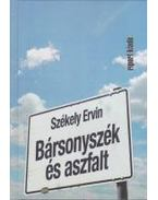Bársonyszék és aszfalt - Székely Ervin