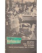 Képes Nyelvmester 1983/10.