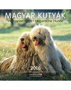 Naptár Magyar Kutyák 2016 22x22 cm