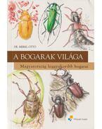 A bogarak világa