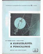 A kuruzslástól a penicillinig