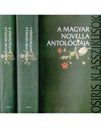 A magyar novella antológiája i-ii