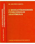 A mozgatórendszer funkcionális anatómiája