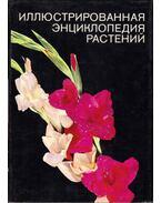 A növények képes enciklopédiája (orosz)