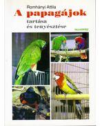 A papagájok tartása és tenyésztése