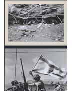 A háborúk százada