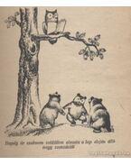 A három kis medvebocs
