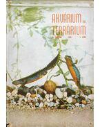 Akvárium és terrárium III. évf. 1958/2. szám