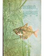 Akvárium és terrárium III. évf. 1958/1. szám