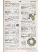 A Modern English-Arabic Dictionary