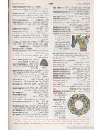 A Modern English-Arabic Dictionary
