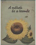 A méhek és a termés