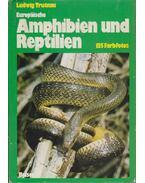 Europaische Amphibien und Reptilien