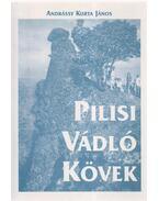 Pilisi vádló kövek - Andrássy Kurta János